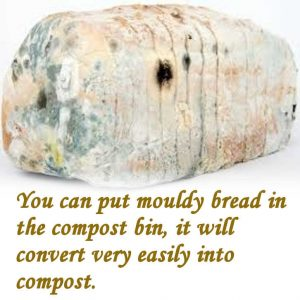 Can I put moldy bread in compost?