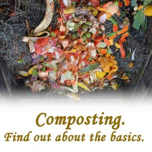 Composting. Find out about the basics.
