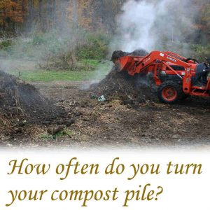 How often do you turn your compost pile?