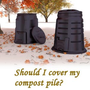 Should I cover my compost pile?