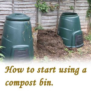 What to put in compost bin to start.