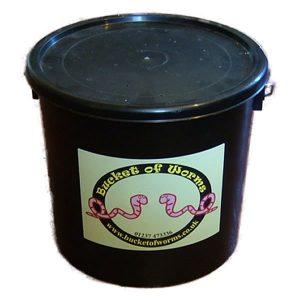 worm_bucket