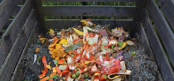 What goes in a compost bin?