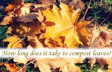 How long does it take to compost leaves?