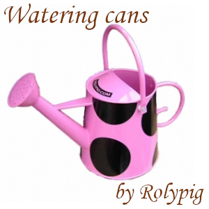 Pink rose watering can by Rolypig