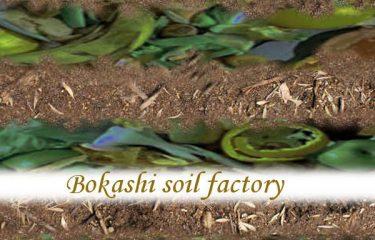 Bokashi soil factory