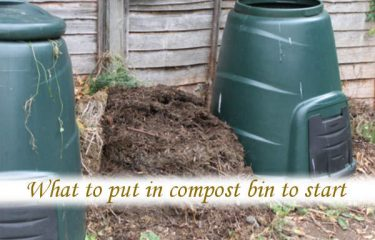 What to put in compost bin to start