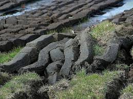 Is Peat good for gardens?
