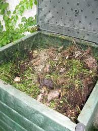 What not to put in your compost pile.