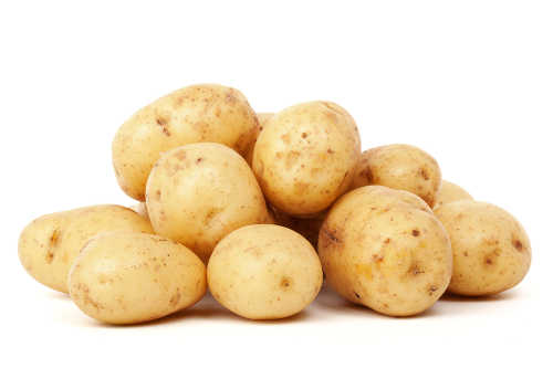 Which variety of potatoes to grow?