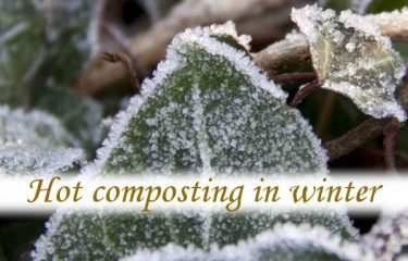 Hot composting in winter