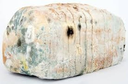 Can I put moldy bread in compost_2