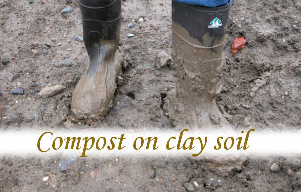 Compost on clay soil