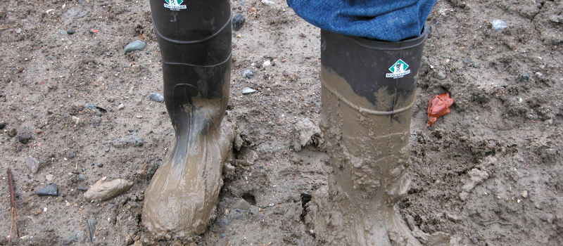 What is heavy clay soil?