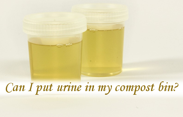 Can I put urine in my compost bin?