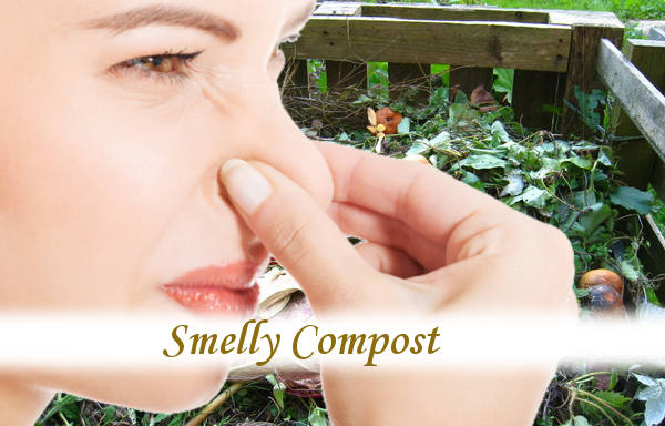 Smelly Compost