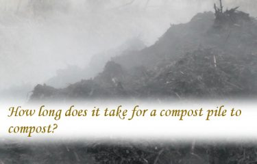 How long does it take for a compost pile to compost?