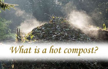 What is a hot compost?