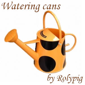 Orange rose watering can by Rolypig