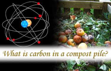 What is carbon in a compost pile?