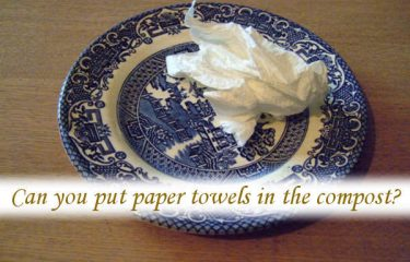 Can you put paper towels in the compost?