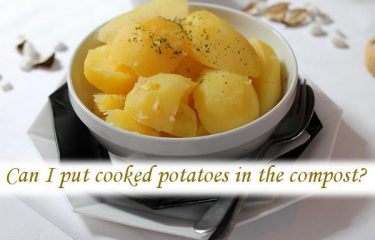Can I put cooked potatoes in the compost?