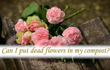 Can I put dead flowers in my compost?