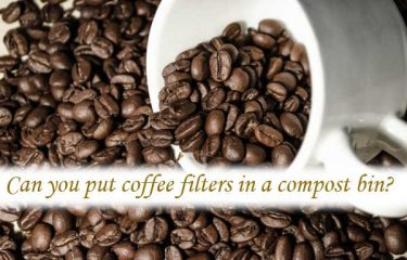 Can you put coffee filters in a compost bin?