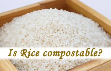 Is Rice compostable?