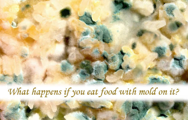 What happens if you eat food with mold on it?