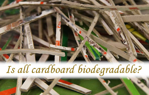 Is all cardboard biodegradable?