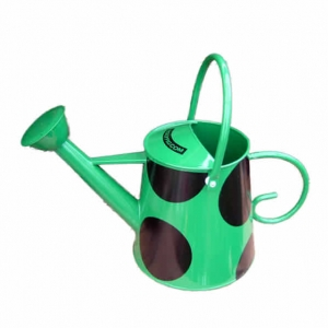 Green rose watering can by Rolypig