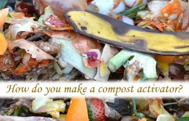 How do you make a compost activator?