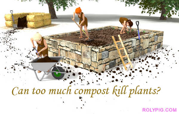Can too much compost kill plants?