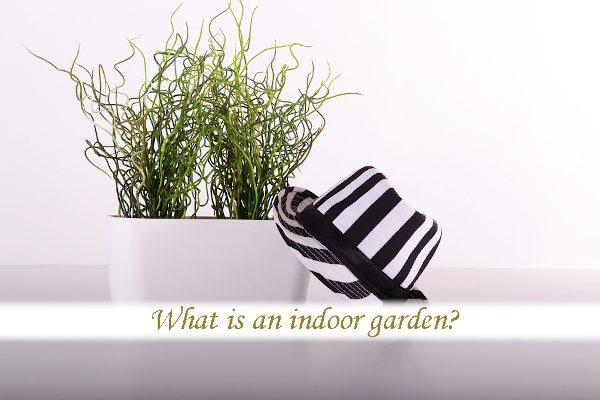 What is an indoor garden?