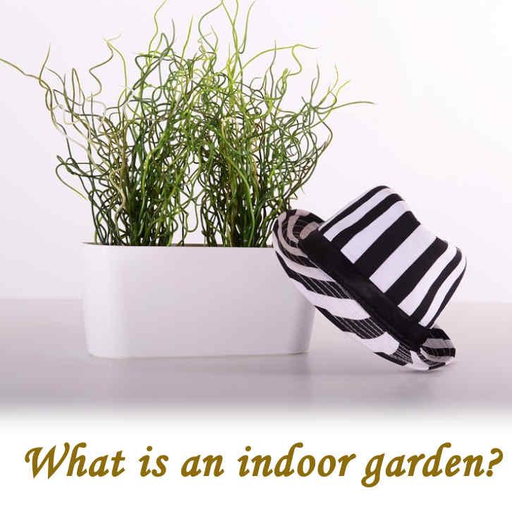 What is an indoor garden?_02