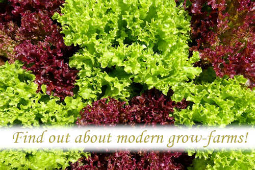 Find out about modern Grow-farms.