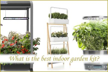 What is the best indoor garden kit?