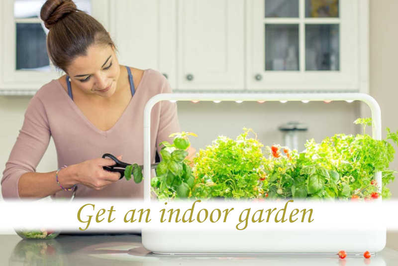 What is the best indoor garden kit?_03