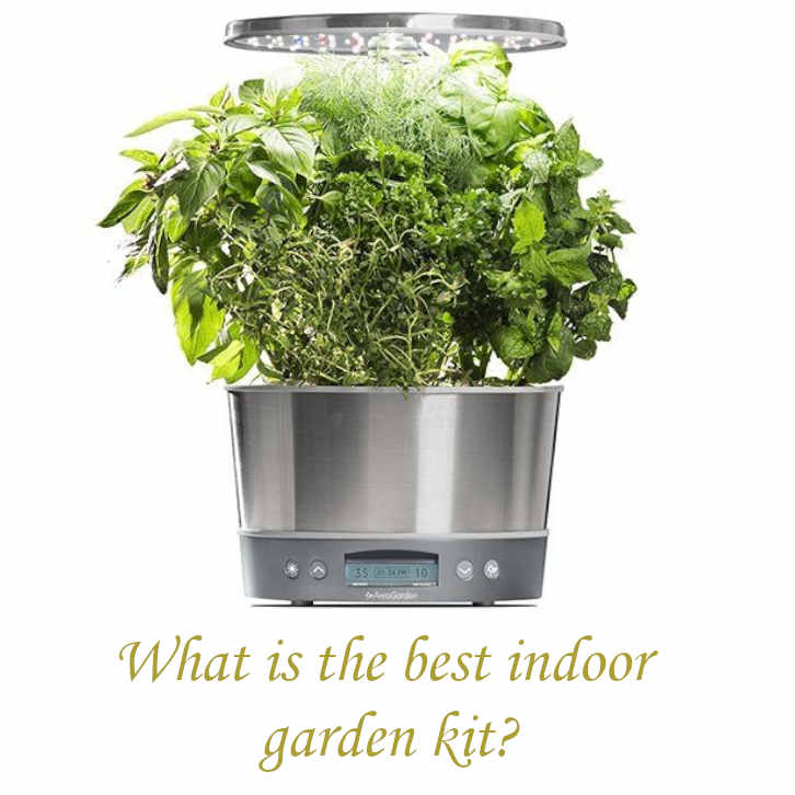 What is the best indoor garden kit?_04