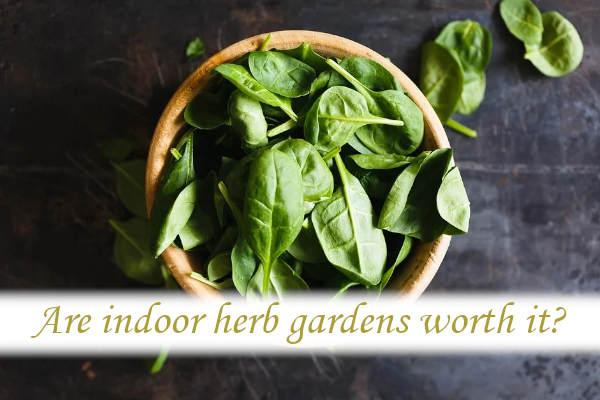 Are indoor herb gardens worth it?