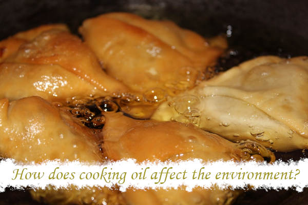 How to dispose of cooking oil_3
